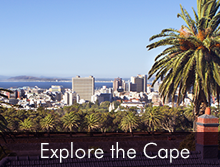 Explore the Western Cape